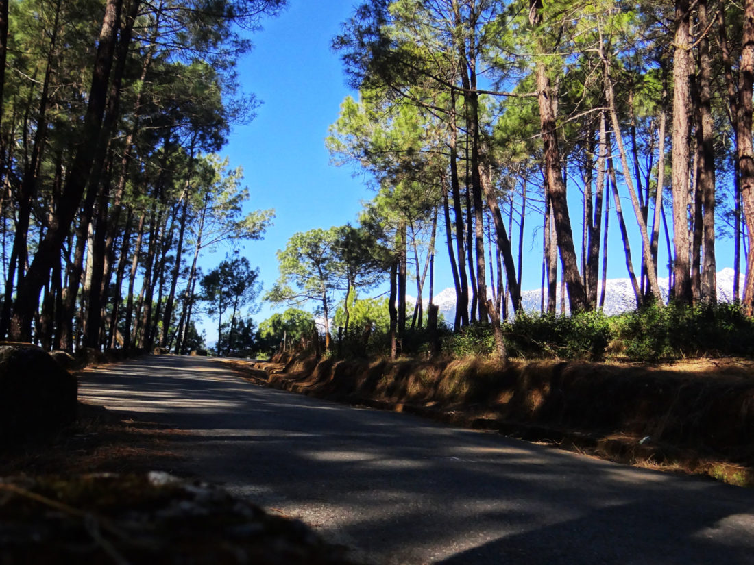 bir-sherabling-route